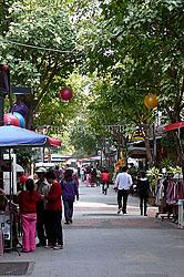 tree-lined Fuzhong Street